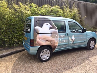 Dove Releases for funerals in Norwich